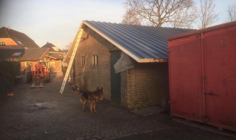 dakpanelen voor stallen